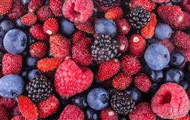 More berries, apples, and tea may have protective benefits against Alzheimer's