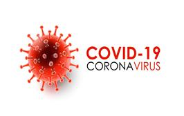Coronavirus damages the endocrine system